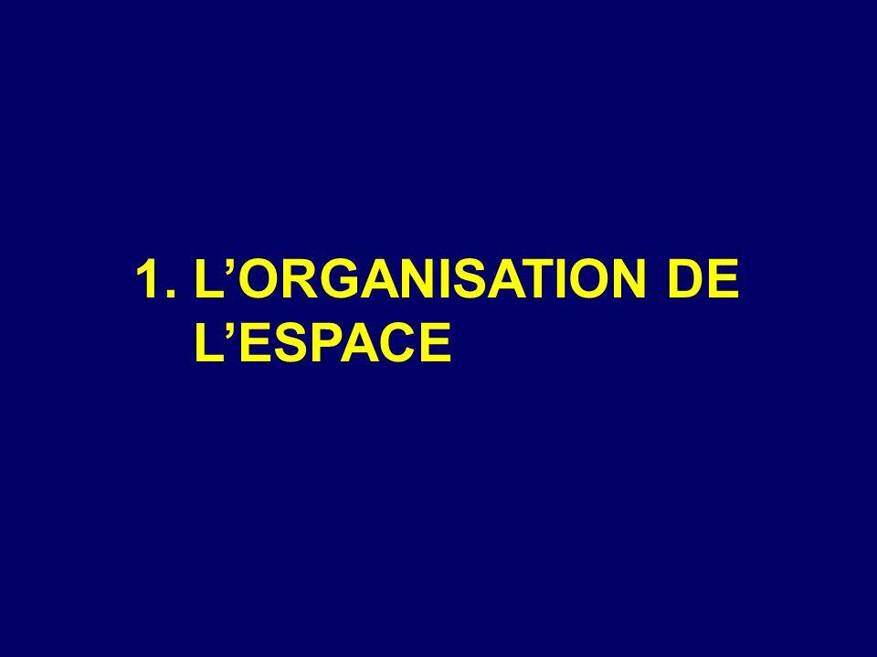 PLAN 1. LORGANISATION DE L ESPACE 2. PORTRAIT DU SAGUENAY-LAC- SAINT-JEAN 3.