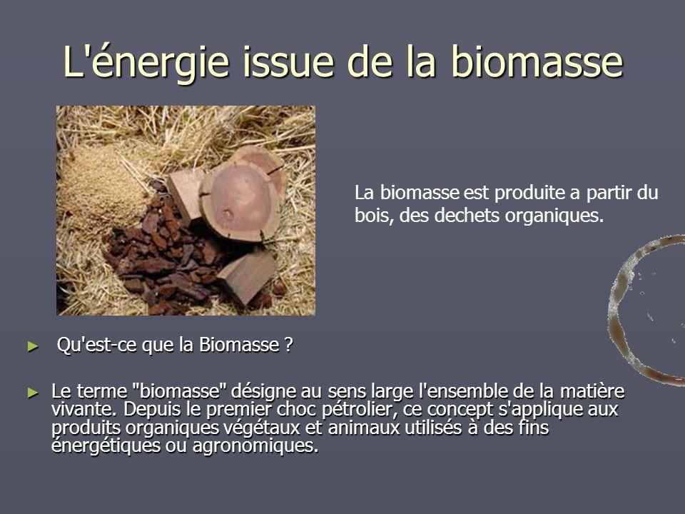 L'énergie issue de la biomasse Qu'est-ce que la Biomasse ? Qu'est-ce que la Biomasse ? Le terme