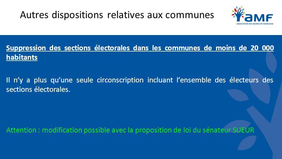 Autres dispositions relatives aux communes Suppression des sections électorales dans les communes de moins de 20 000 habitants Il ny a plus quune seule circonscription incluant lensemble des électeurs des sections électorales.