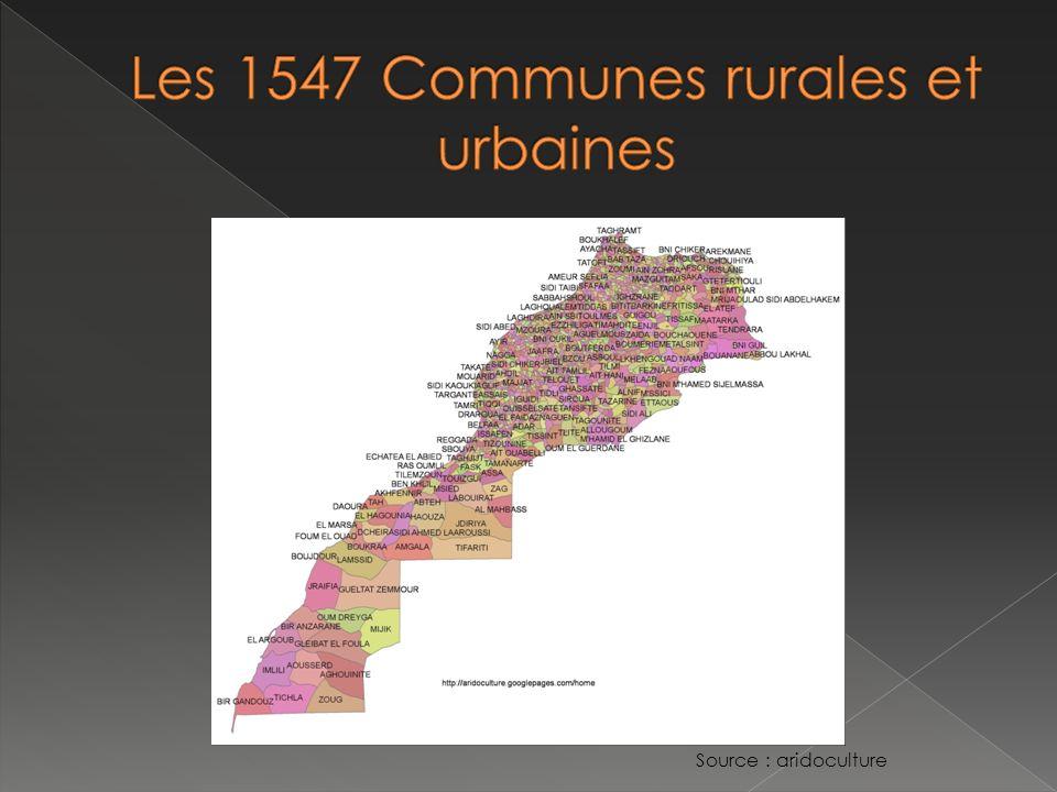 LEtat : normes et planification urbaine Les Collectivités locales : lopérationnel Confusion partage des responsabilités et grand nombre dintervenants entrave mise en œuvre des plans durbanisme.