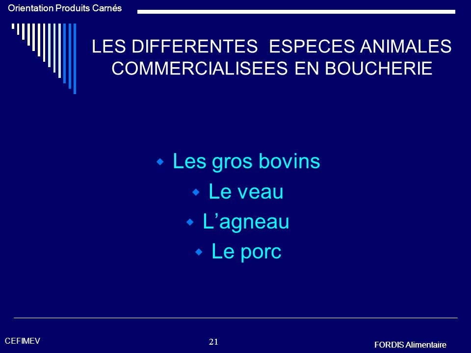 20 LES DIFFERENTES ESPECES ANIMALES