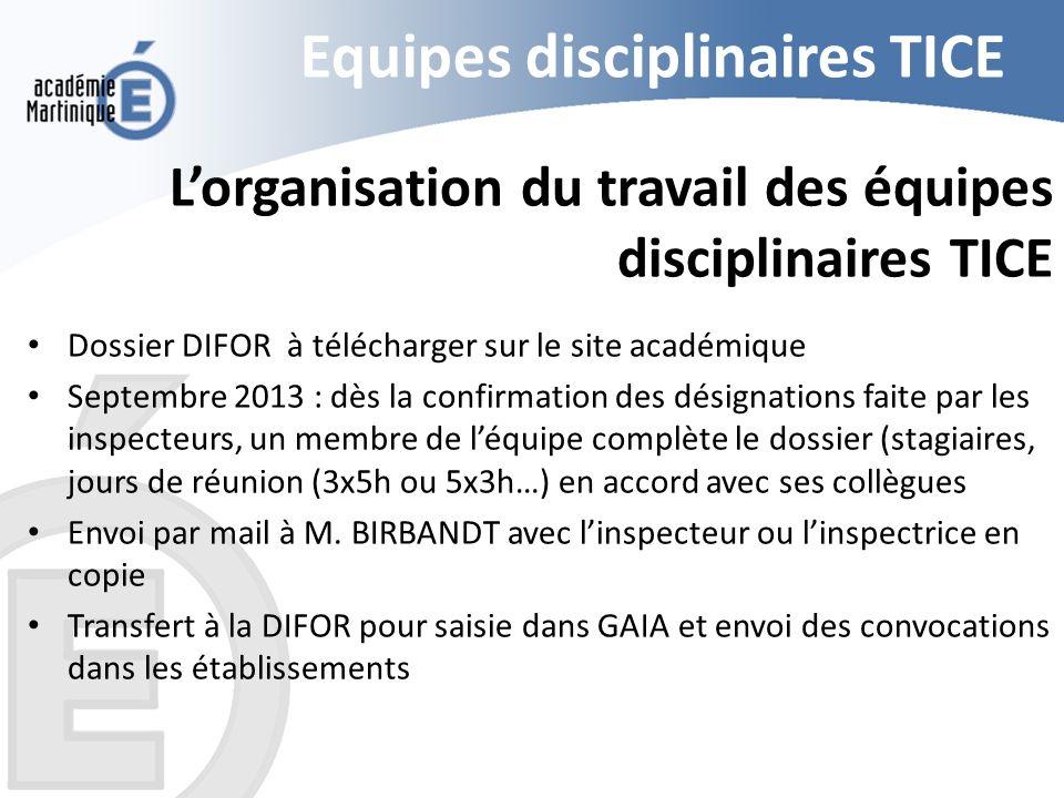 Equipes disciplinaires TICE Lorganisation du travail des équipes disciplinaires TICE Dossier DIFOR à télécharger sur le site académique Septembre 2013
