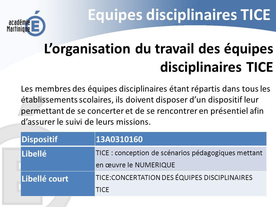 Equipes disciplinaires TICE Lorganisation du travail des équipes disciplinaires TICE Les membres des équipes disciplinaires étant répartis dans tous l