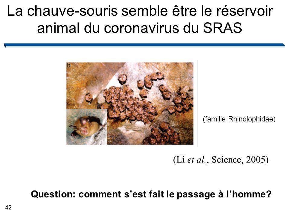 42 La chauve-souris semble être le réservoir animal du coronavirus du SRAS (Li et al., Science, 2005) (famille Rhinolophidae) Question: comment sest fait le passage à lhomme?
