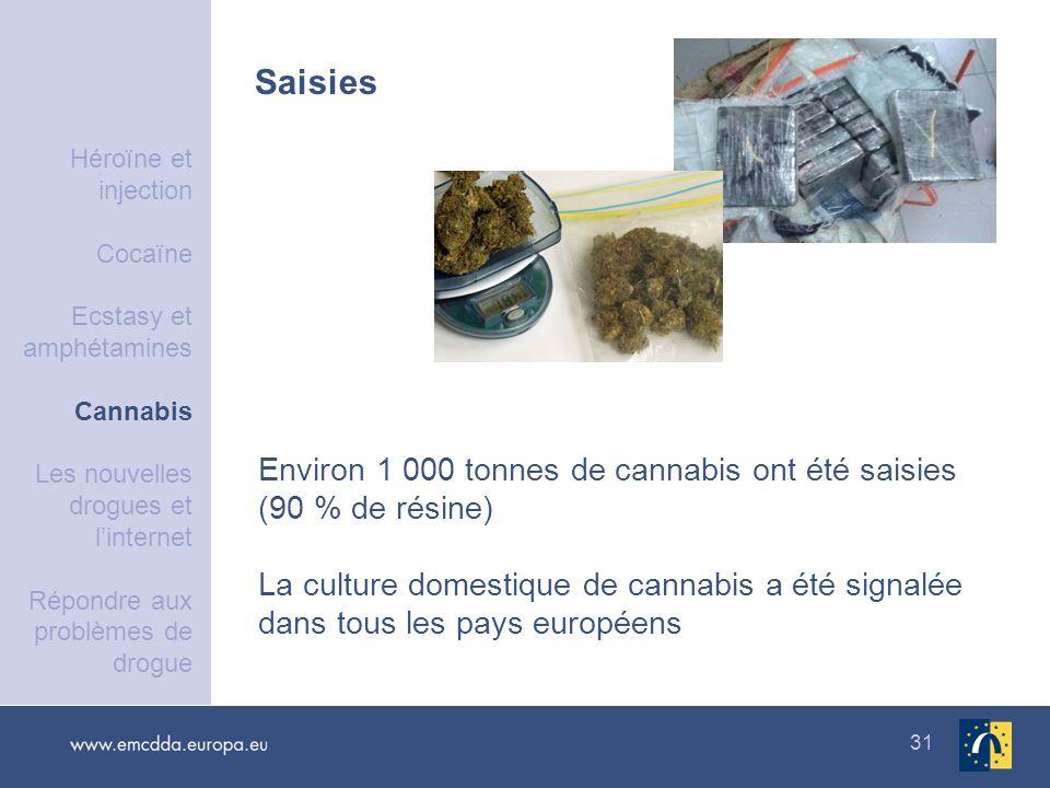 31 Saisies Environ 1 000 tonnes de cannabis ont été saisies (90 % de résine) La culture domestique de cannabis a été signalée dans tous les pays europ