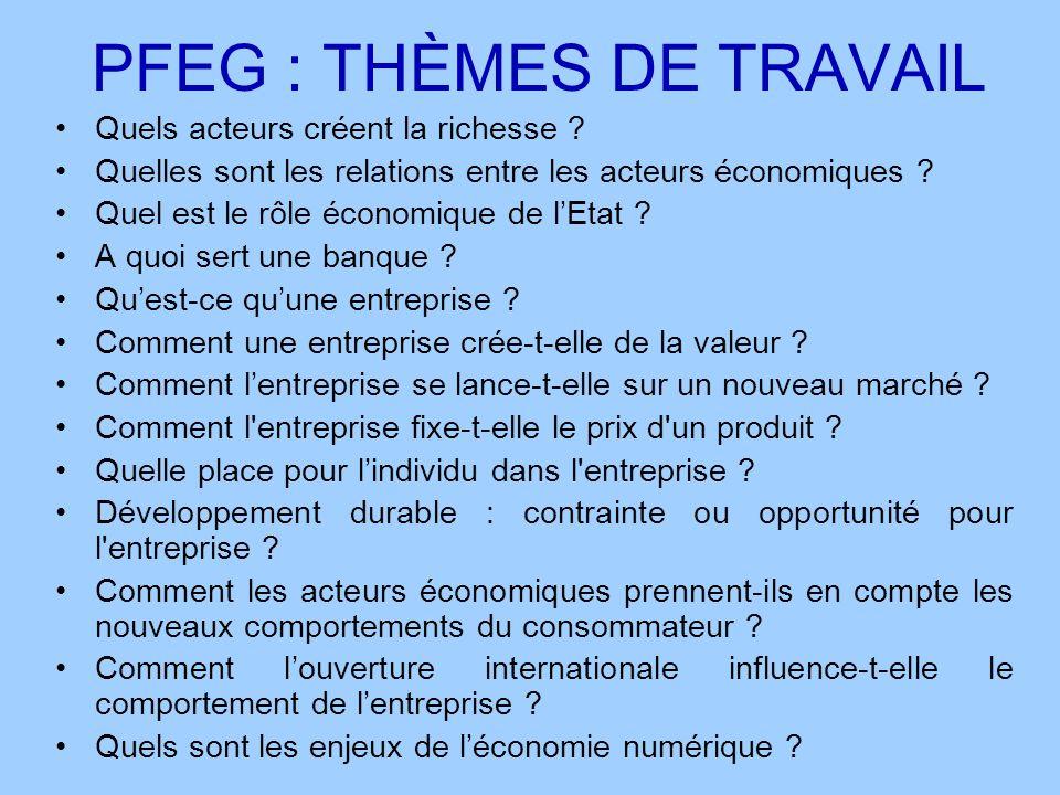 PFEG : THÈMES DE TRAVAIL Quels acteurs créent la richesse ? Quelles sont les relations entre les acteurs économiques ? Quel est le rôle économique de