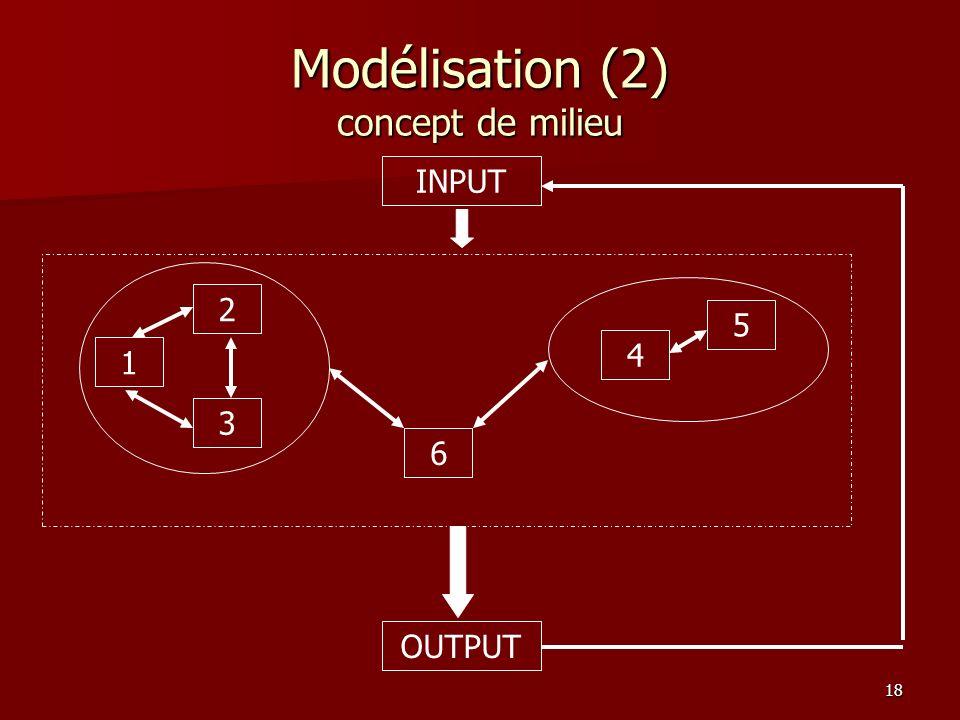 18 Modélisation (2) concept de milieu 1 2 3 6 4 5 INPUT OUTPUT
