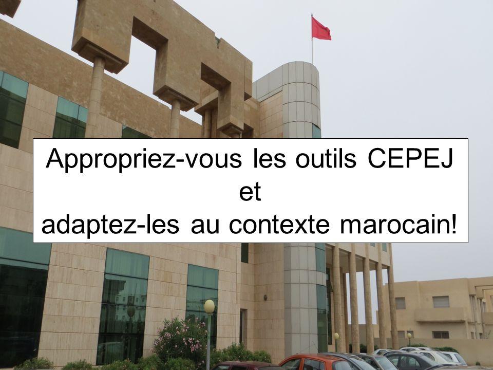 (c) CEPEJ - ISM Maroc 20133 Objectifs de la formation Présenter et analyser quelques statistiques judiciaires Présenter des indicateurs statistiques pour mesurer lefficacité de la justice Exercer pratiquement le calcul dindicateurs et interpréter les résultats