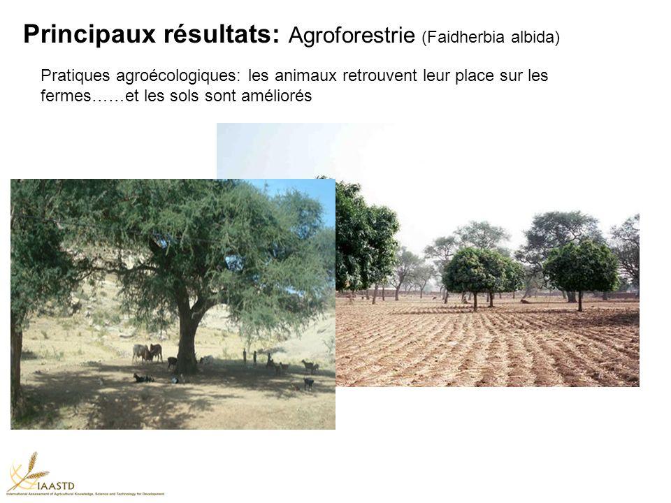 Principaux résultats: Agroforestrie (Faidherbia albida) Pratiques agroécologiques: les animaux retrouvent leur place sur les fermes……et les sols sont améliorés
