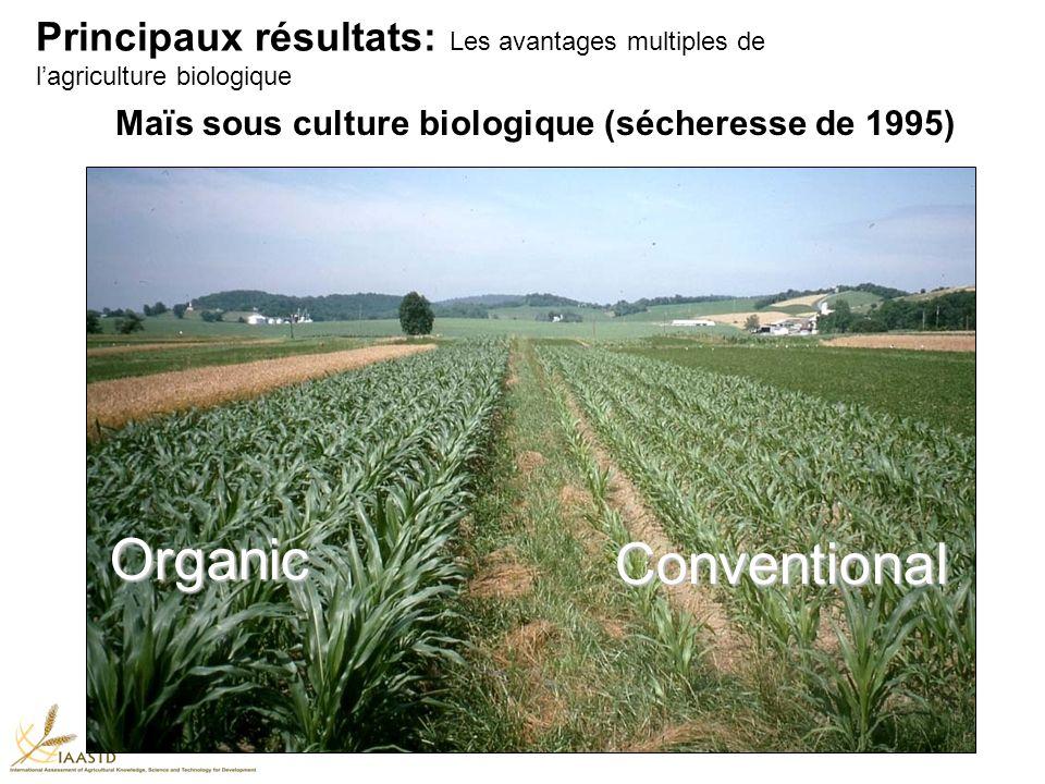 Maïs sous culture biologique (sécheresse de 1995) Organic Conventional Principaux résultats: Les avantages multiples de lagriculture biologique