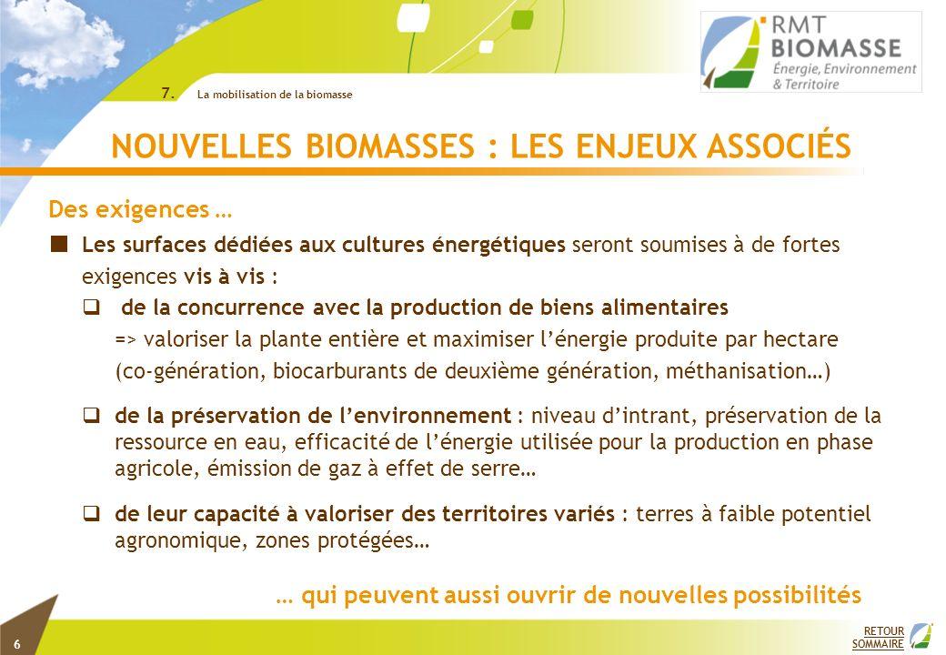 RETOUR SOMMAIRE NOUVELLES BIOMASSES : LES ENJEUX ASSOCIÉS 7. La mobilisation de la biomasse Les surfaces dédiées aux cultures énergétiques seront soum