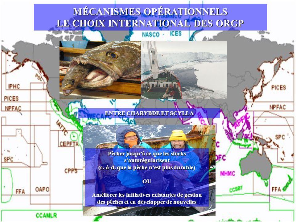 MÉCANISMES OPÉRATIONNELS LE CHOIX INTERNATIONAL DES ORGP ENTRE CHARYBDE ET SCYLLA Pêcher jusquà ce que les stocks sautorégularisent (c.-à-d. que la pê