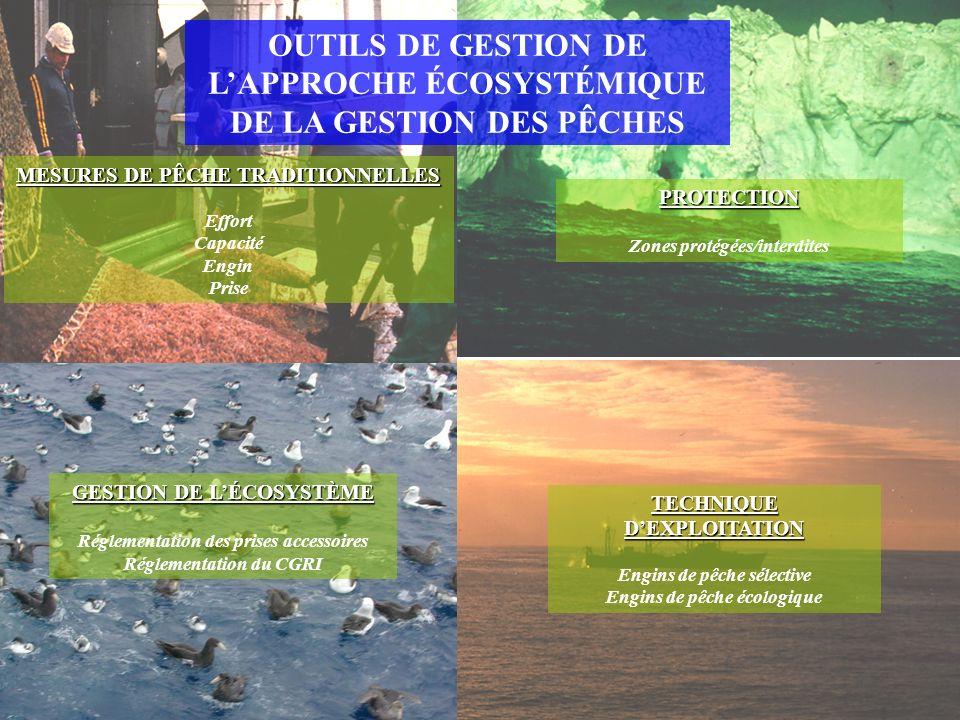 OUTILS DE GESTION DE LAPPROCHE ÉCOSYSTÉMIQUE DE LA GESTION DES PÊCHES MESURES DE PÊCHE TRADITIONNELLES Effort Capacité Engin Prise TECHNIQUE DEXPLOITATION Engins de pêche sélective Engins de pêche écologique GESTION DE LÉCOSYSTÈME Réglementation des prises accessoires Réglementation du CGRI PROTECTION Zones protégées/interdites
