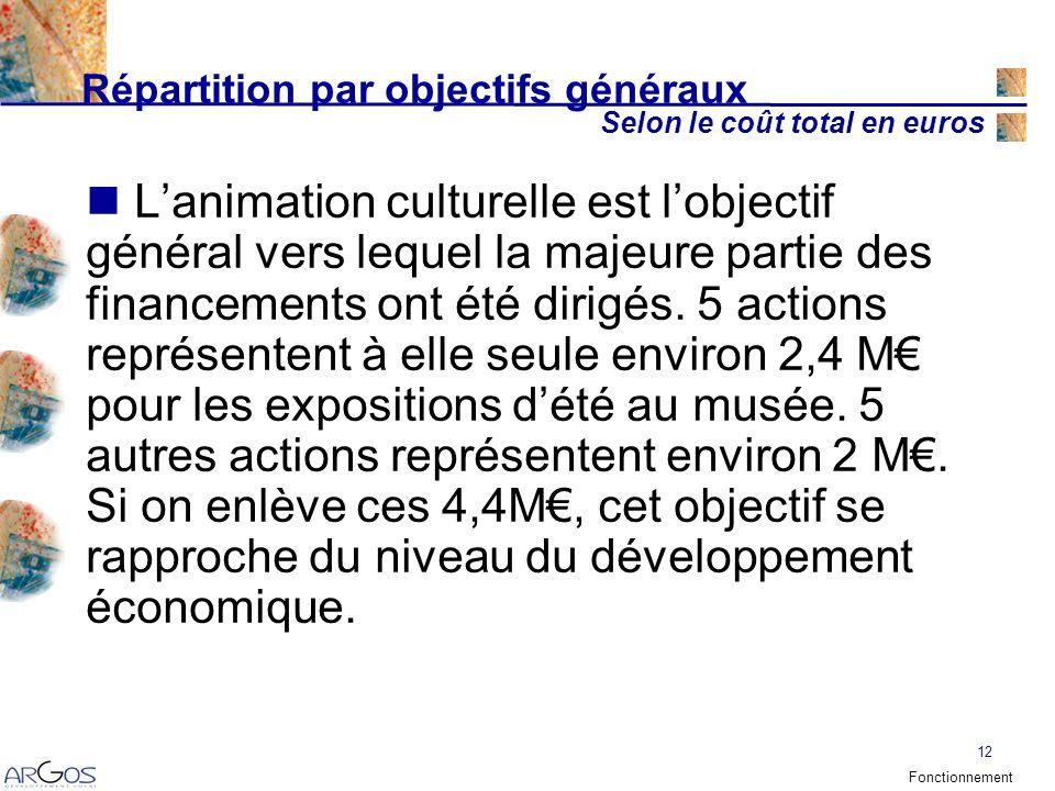 12 Répartition par objectifs généraux Selon le coût total en euros Lanimation culturelle est lobjectif général vers lequel la majeure partie des financements ont été dirigés.