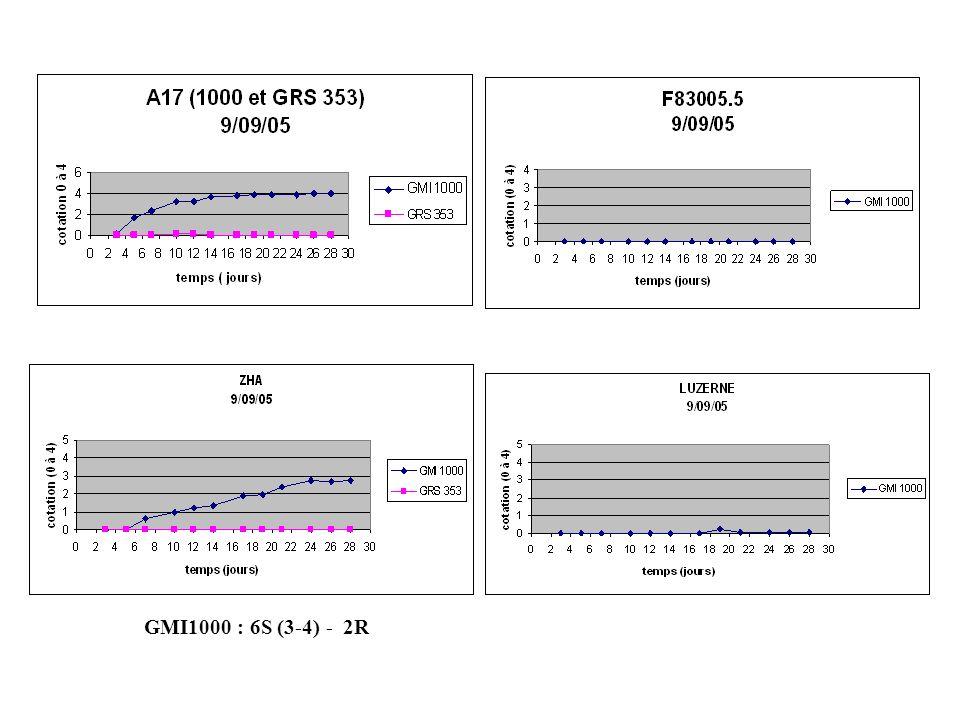GMI1000, GRS353 : 8R (1) - 7R (1) GMI1000, GRS353 : 8R (1) - 8R (1) GMI1000, GRS353 : 8R (1) - 7R (1)