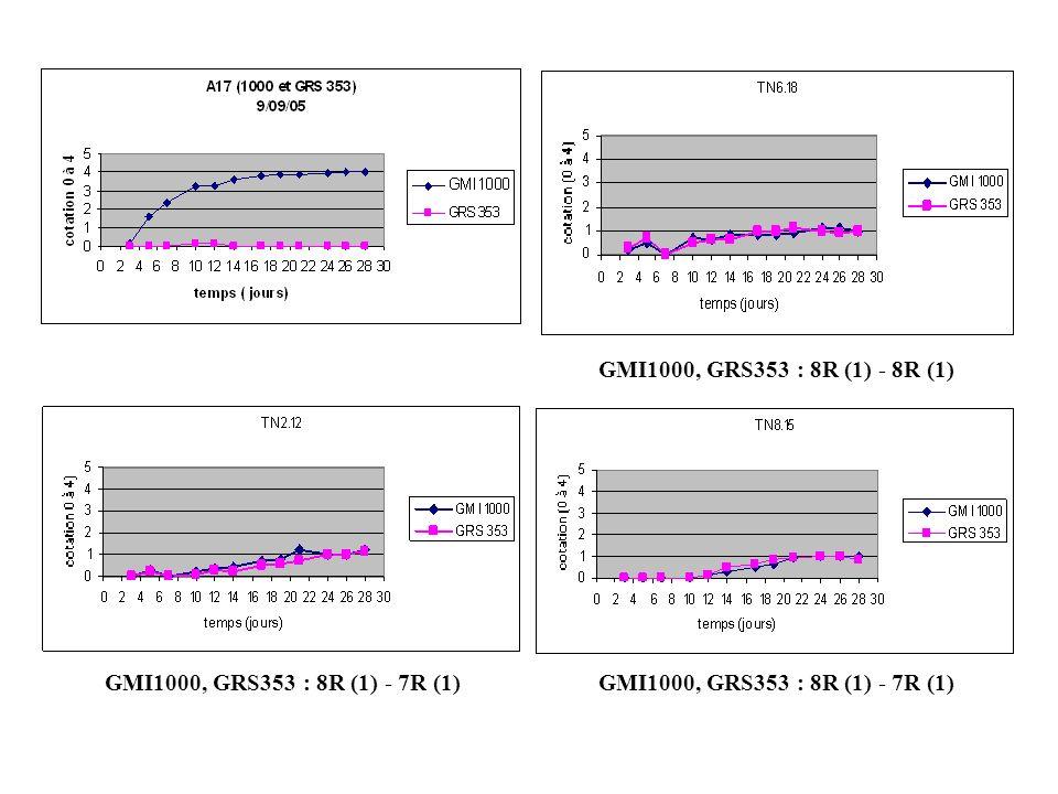 GRS353 : 1S (4) - 7R GMI1000 : 2S (4) - 6R GMI1000 : 1S (4) - 7R