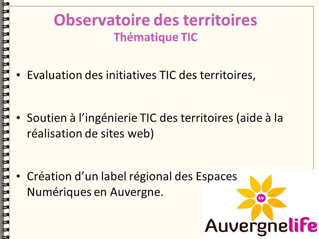 Evaluation des initiatives TIC des territoires, Soutien à lingénierie TIC des territoires (aide à la réalisation de sites web) Création dun label régional des Espaces Numériques en Auvergne.