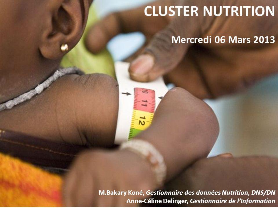 CLUSTER NUTRITION Mercredi 06 Mars 2013 M.Bakary Koné, Gestionnaire des données Nutrition, DNS/DN Anne-Céline Delinger, Gestionnaire de lInformation