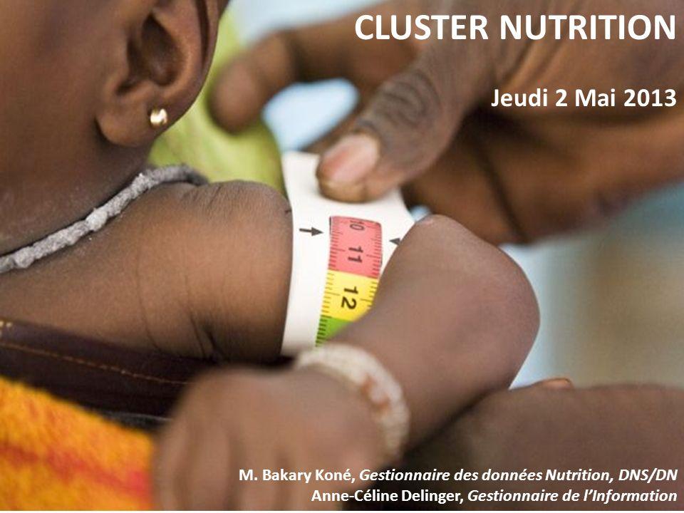 CLUSTER NUTRITION Jeudi 2 Mai 2013 M. Bakary Koné, Gestionnaire des données Nutrition, DNS/DN Anne-Céline Delinger, Gestionnaire de lInformation