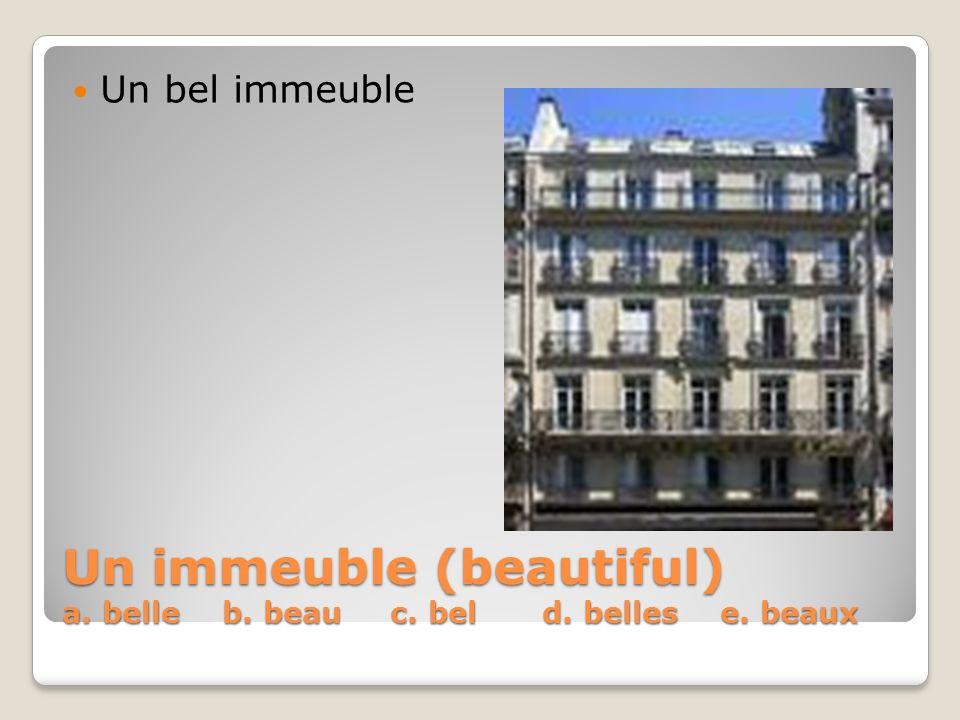 Un immeuble (beautiful) a. belle b. beau c. bel d. belles e. beaux Un bel immeuble