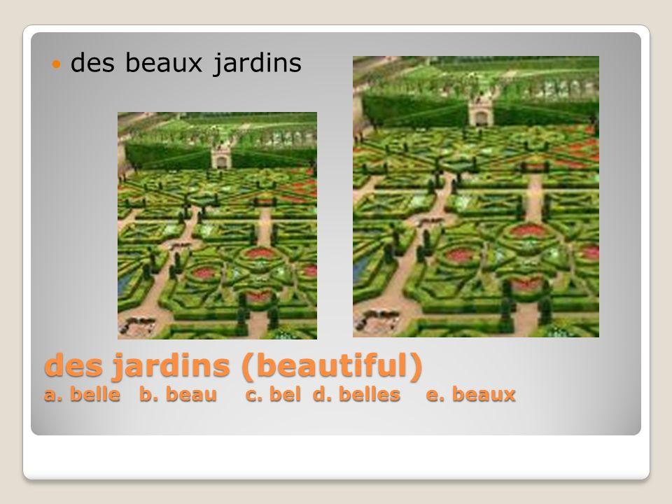 des jardins (beautiful) a. belle b. beauc. beld. belles e. beaux des beaux jardins