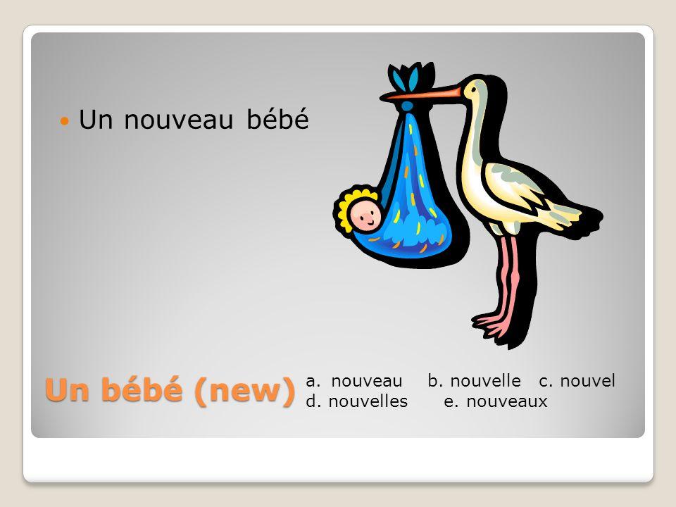 Un bébé (new) Un nouveau bébé a.nouveau b. nouvelle c. nouvel d. nouvelles e. nouveaux