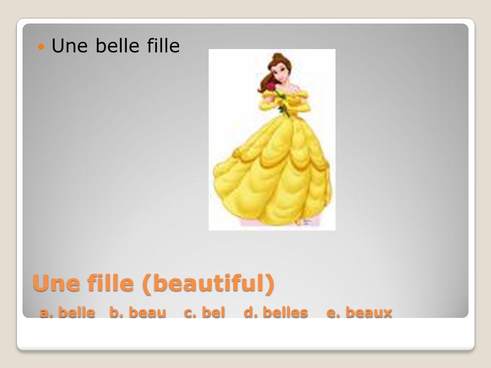 Une fille (beautiful) a. belle b. beau c. bel d. belles e. beaux Une belle fille
