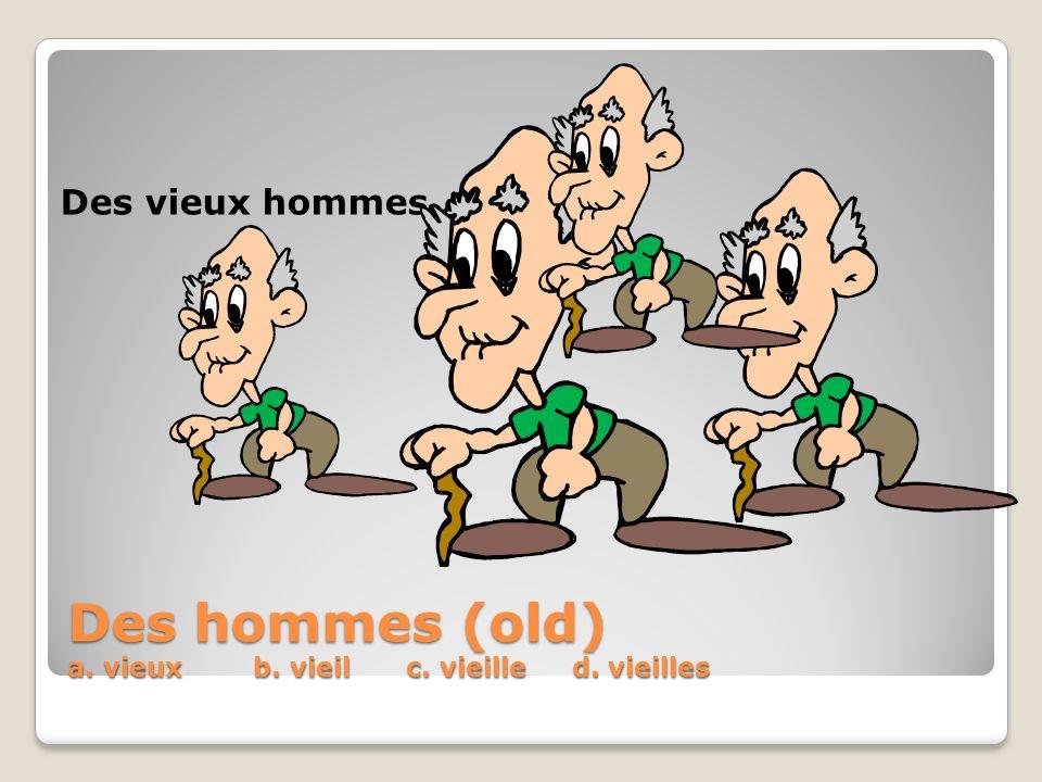 Des hommes (old) a. vieux b. vieil c. vieille d. vieilles Des vieux hommes