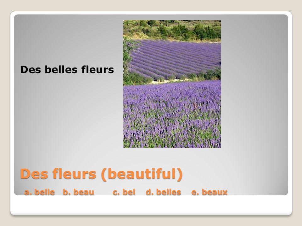 Des fleurs (beautiful) a. belle b. beau c. bel d. belles e. beaux Des belles fleurs