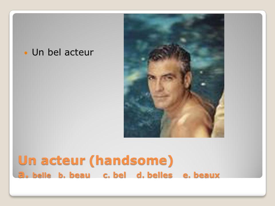 Un acteur (handsome) a. belle b. beau c. bel d. belles e. beaux Un bel acteur