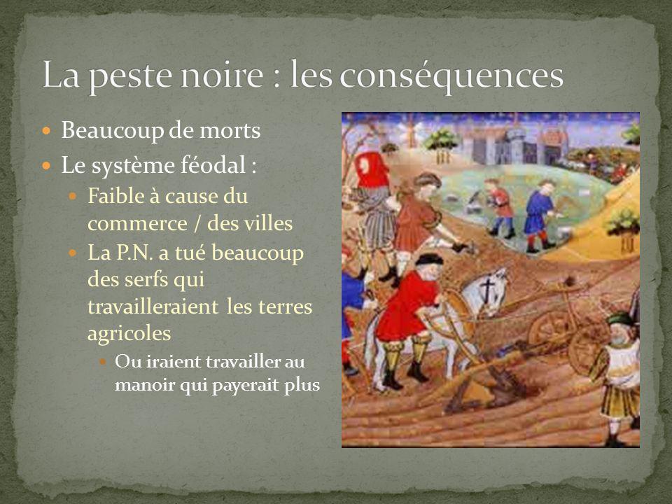 Beaucoup de morts Le système féodal : Faible à cause du commerce / des villes La P.N. a tué beaucoup des serfs qui travailleraient les terres agricole