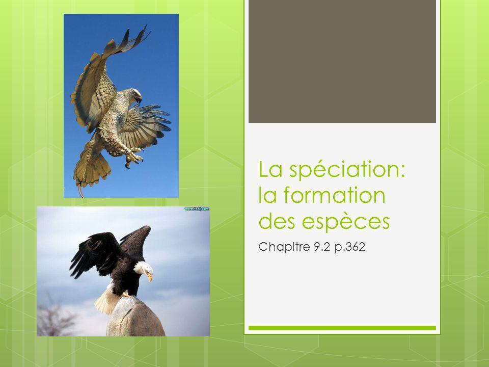 La spéciation: la formation des espèces Chapitre 9.2 p.362