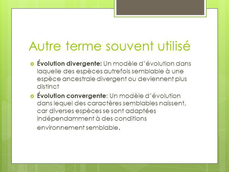 Autre terme souvent utilisé Évolution divergente: Un modèle dévolution dans laquelle des espèces autrefois semblable à une espèce ancestrale divergent