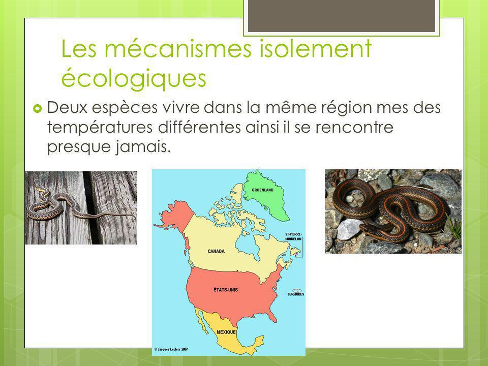 Les mécanismes isolement écologiques Deux espèces vivre dans la même région mes des températures différentes ainsi il se rencontre presque jamais.