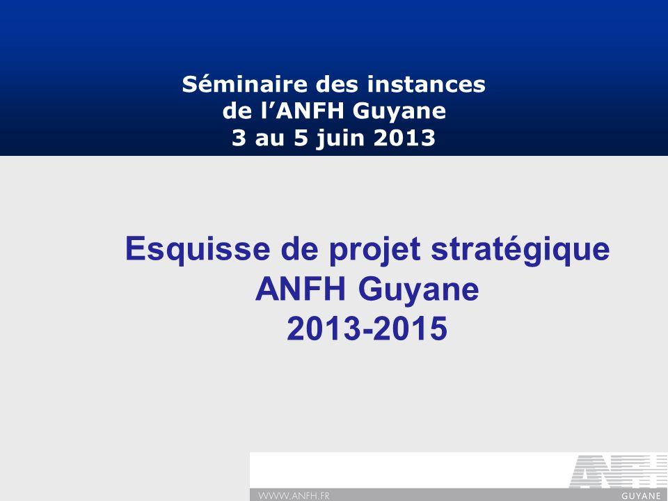 Esquisse de projet stratégique ANFH Guyane 2013-2015 Séminaire des instances de lANFH Guyane 3 au 5 juin 2013
