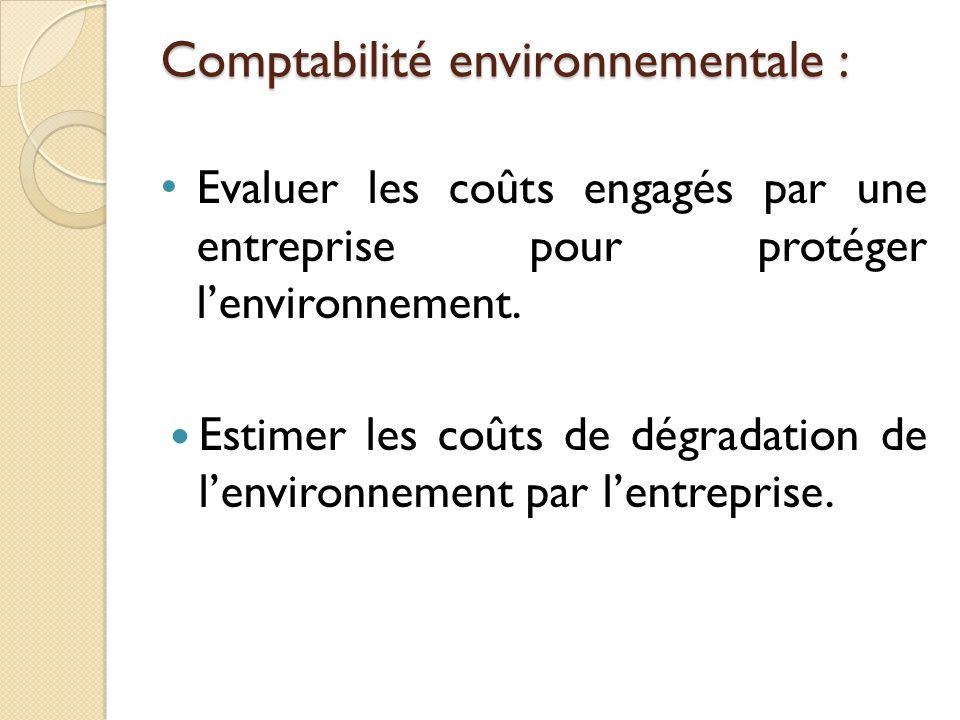 Comptabilité environnementale : Evaluer les coûts engagés par une entreprise pour protéger lenvironnement. Estimer les coûts de dégradation de lenviro