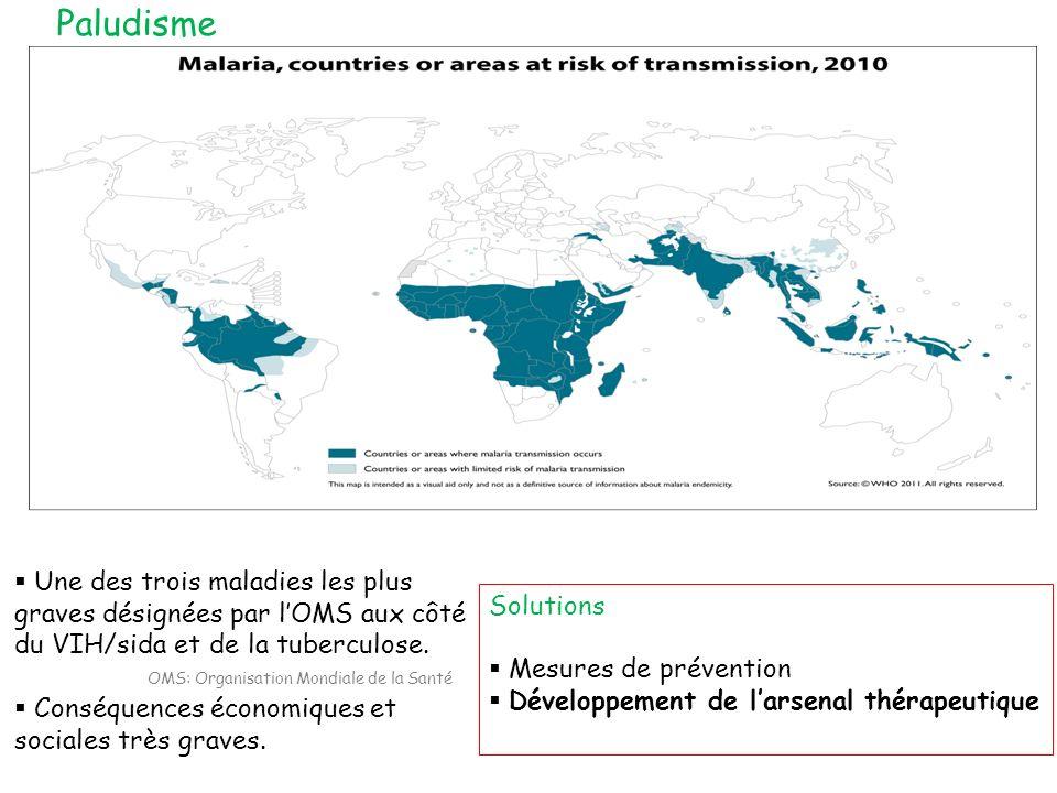 Une des trois maladies les plus graves désignées par lOMS aux côté du VIH/sida et de la tuberculose. Conséquences économiques et sociales très graves.