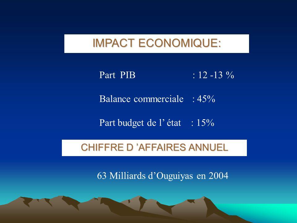 IMPACT ECONOMIQUE: Part PIB : 12 -13 % Balance commerciale : 45% Part budget de l état : 15% 63 Milliards dOuguiyas en 2004 CHIFFRE D AFFAIRES ANNUEL