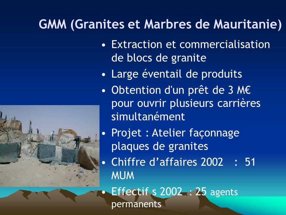 GMM (Granites et Marbres de Mauritanie) Extraction et commercialisation de blocs de granite Large éventail de produits Obtention d'un prêt de 3 M pour