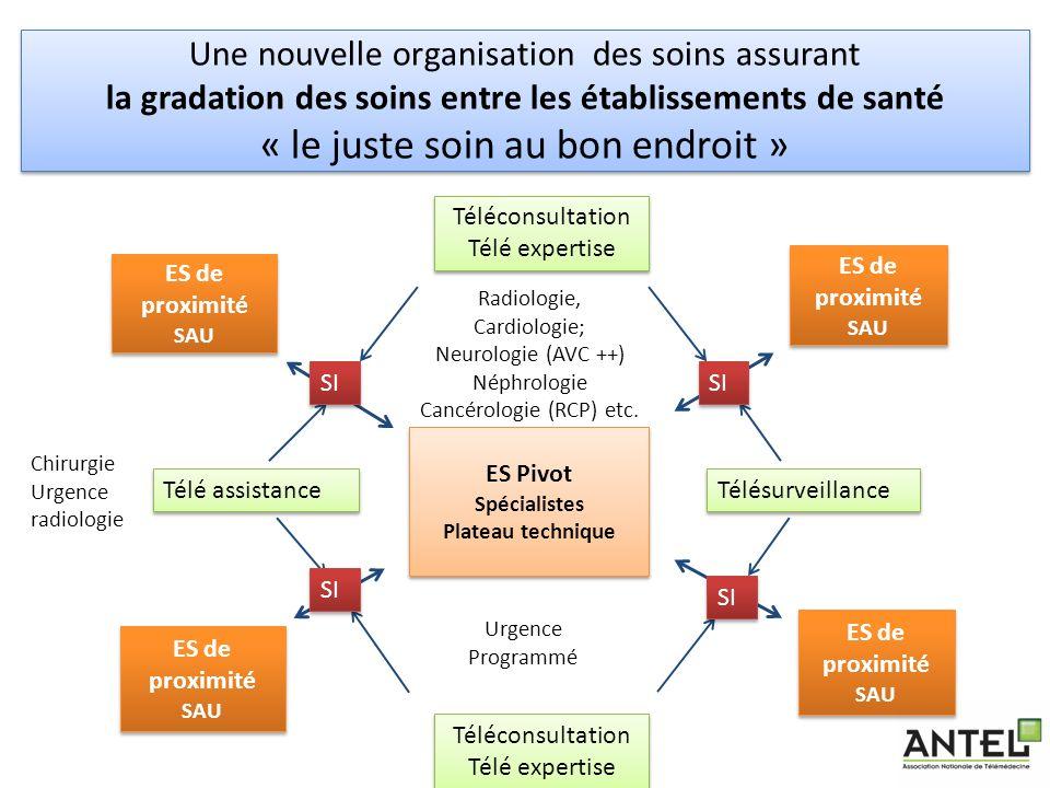 Une nouvelle organisation des soins assurant la gradation des soins entre les établissements de santé « le juste soin au bon endroit » 25 ES Pivot Spé