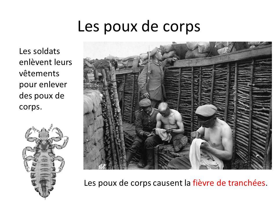 Les poux de corps Les soldats enlèvent leurs vêtements pour enlever des poux de corps. Les poux de corps causent la fièvre de tranchées.