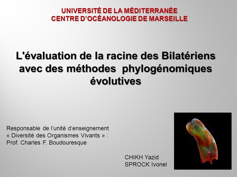 UNIVERSITÉ DE LA MÉDITERRANÉE CENTRE DOCÉANOLOGIE DE MARSEILLE L'évaluation de la racine des Bilatériens avec des méthodes phylogénomiques évolutives
