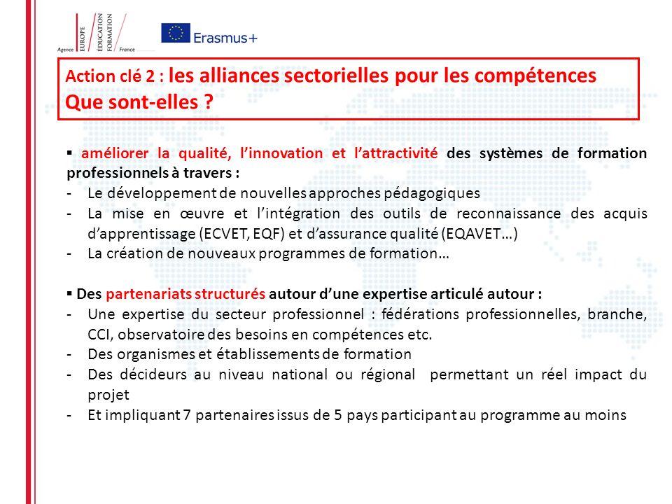 Action clé 2 : les alliances sectorielles pour les compétences Que sont-elles .