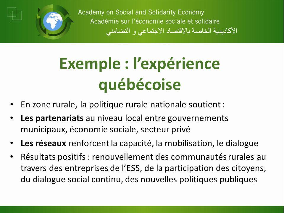 Exemple : lexpérience québécoise En zone rurale, la politique rurale nationale soutient : Les partenariats au niveau local entre gouvernements municip