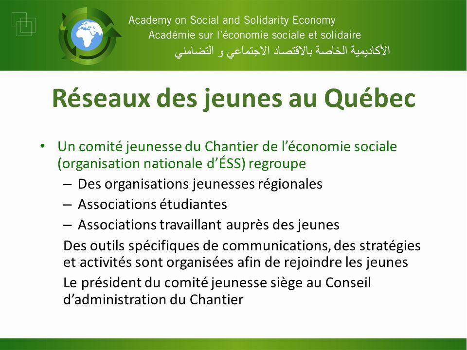 Réseaux des jeunes au Québec Un comité jeunesse du Chantier de léconomie sociale (organisation nationale dÉSS) regroupe – Des organisations jeunesses