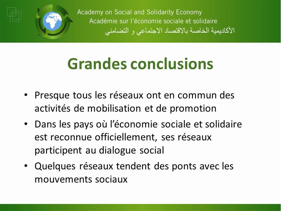Grandes conclusions Presque tous les réseaux ont en commun des activités de mobilisation et de promotion Dans les pays où léconomie sociale et solidai