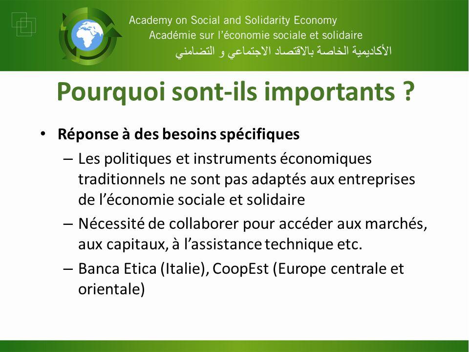 Pourquoi sont-ils importants ? Réponse à des besoins spécifiques – Les politiques et instruments économiques traditionnels ne sont pas adaptés aux ent