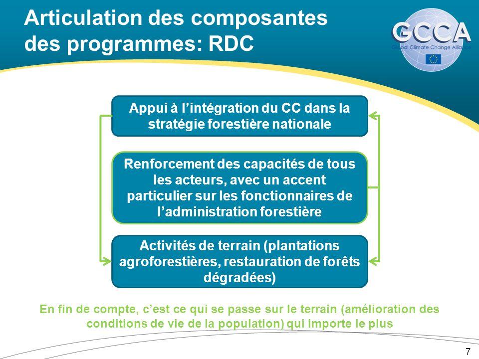 Articulation des composantes des programmes: RDC 7 Appui à lintégration du CC dans la stratégie forestière nationale Renforcement des capacités de tous les acteurs, avec un accent particulier sur les fonctionnaires de ladministration forestière Activités de terrain (plantations agroforestières, restauration de forêts dégradées) En fin de compte, cest ce qui se passe sur le terrain (amélioration des conditions de vie de la population) qui importe le plus