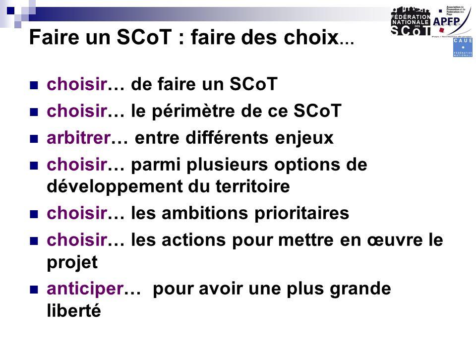 Faire un SCoT : faire des choix … choisir… de faire un SCoT choisir… le périmètre de ce SCoT arbitrer… entre différents enjeux choisir… parmi plusieur