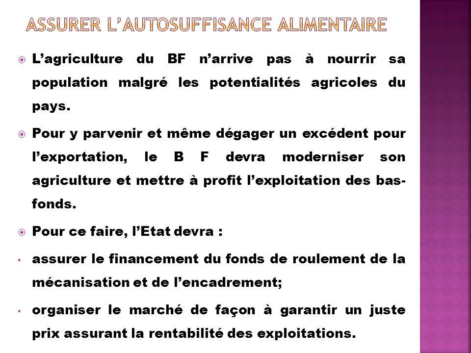 Lagriculture du BF narrive pas à nourrir sa population malgré les potentialités agricoles du pays. Pour y parvenir et même dégager un excédent pour le
